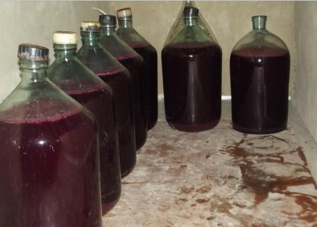 Вино из винограда в домашних условиях с перчаткой